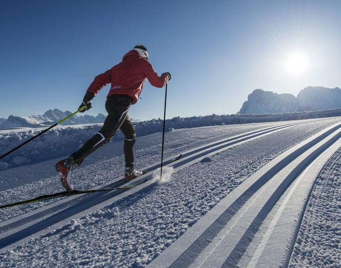 Nordic skier loves his trail!