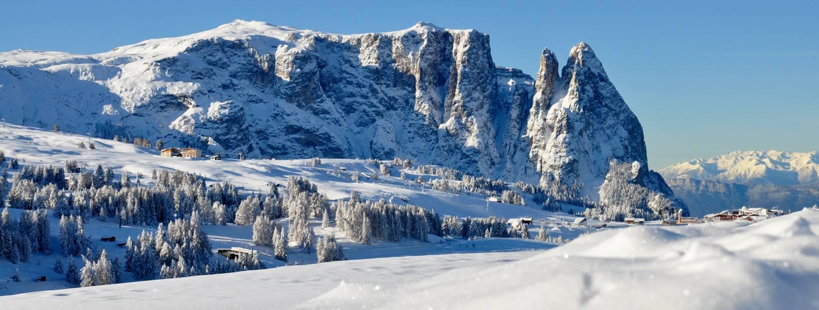 Offerte hotel dall alpe di siusi in alto adige for Offerte soggiorno in trentino alto adige