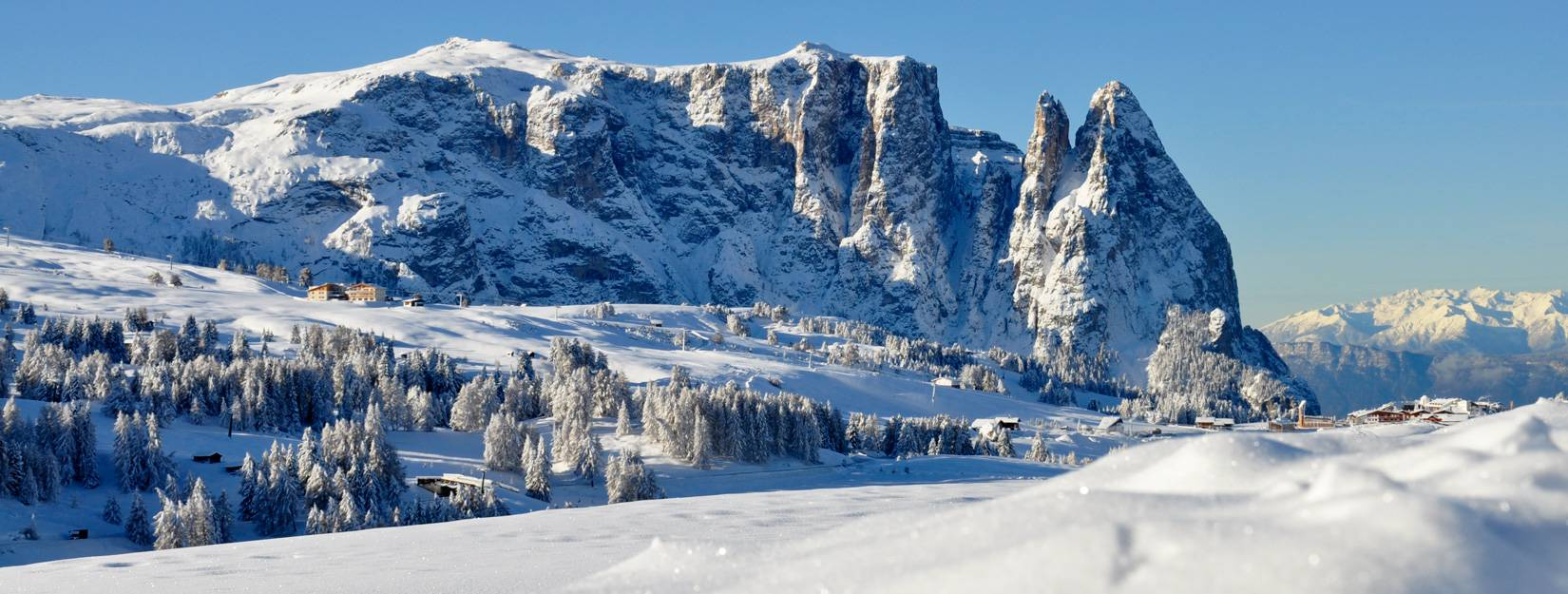 Your hotel on the Alpe di Siusi/Seiser Alm Parc Hotel Florian